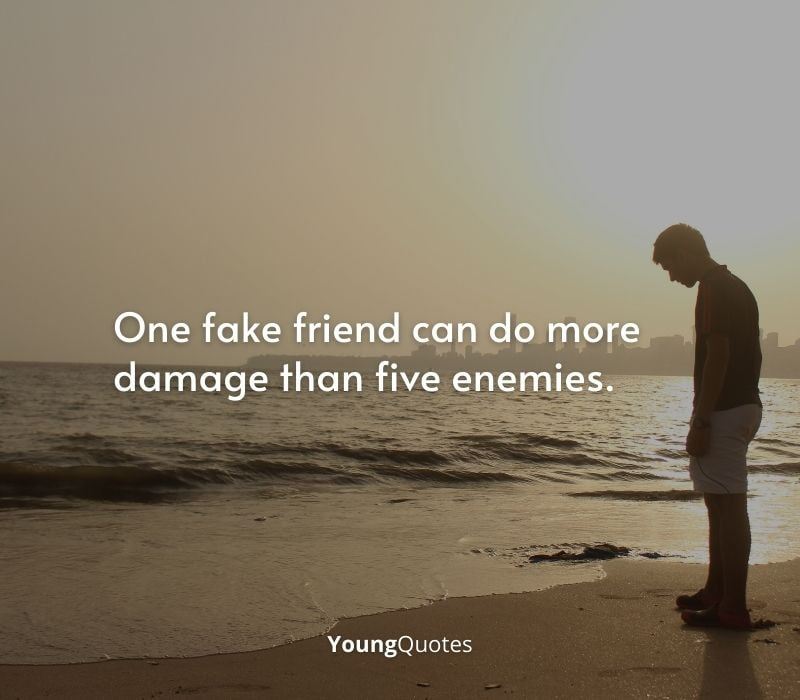 people Quotes and sayings - One fake friend can do more damage than five enemies.