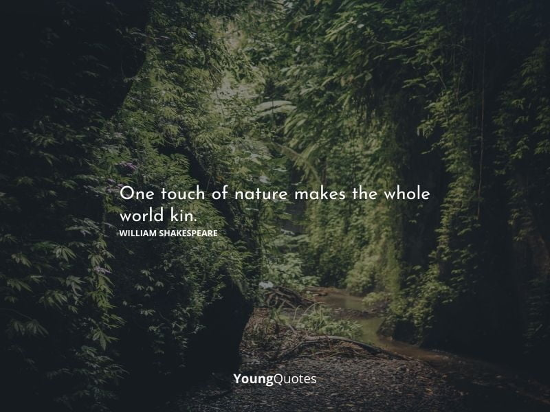"""""""One touch of nature makes the whole world kin."""" – William Shakespeare"""